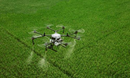 GeoAI-Driven Drone Knows When and Where to Spray Pesticide