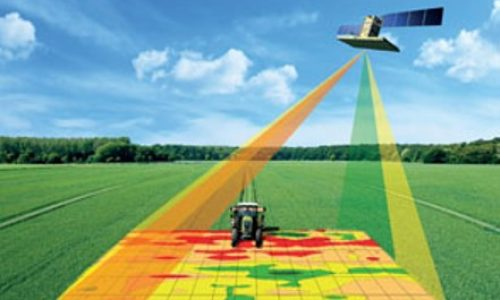 Monitor Crop Fields and Detect High-Risk Spot in Real-time